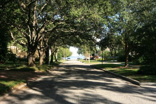Bayshore Beautiful | One of South Tampa's Best Neighborhoods