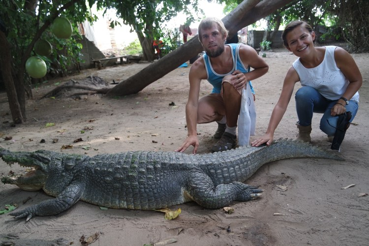 Crocodile Pool in Bakau While Traveling The Gambia