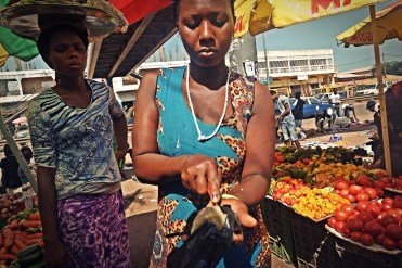 African woman selling Cassava at the market