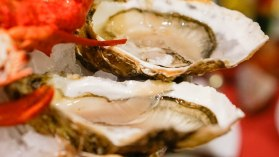 oysters in the restaurant Pedra Alta
