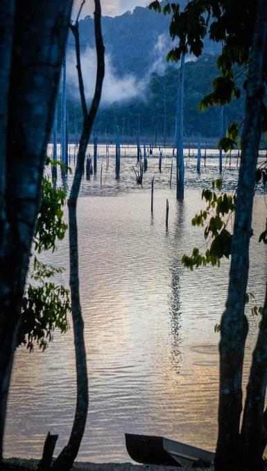 Ston Eiland in Suriname