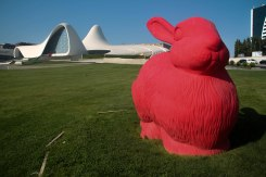 Red bunny in front of some buildings / Hitchhiking Journey