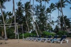 beach loungers at the beach of las Terrenas