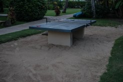 table tennis in the sand