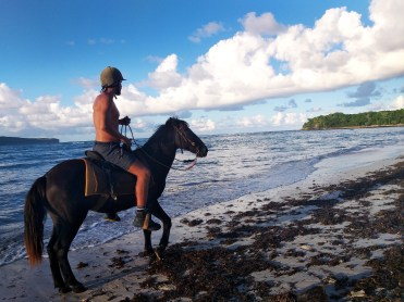 man doing horse riding at the sea