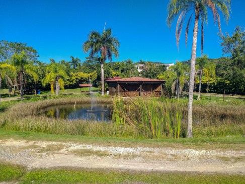 pond in San Sebastian in Puerto Rico
