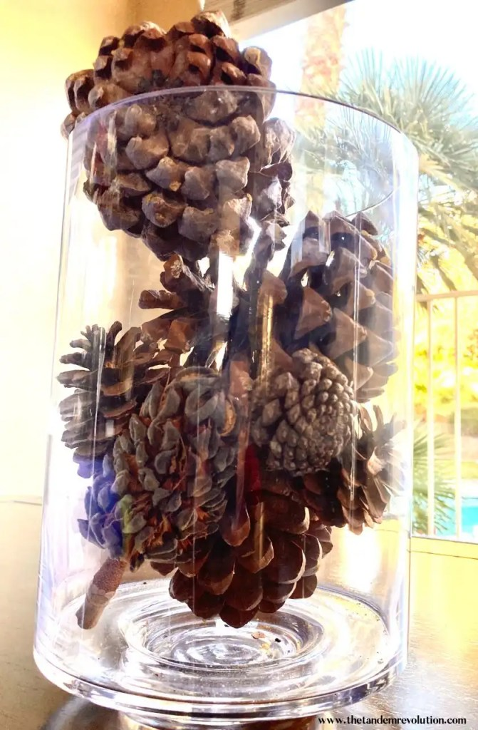 Pinecones placed in a clear cylindric jar as decoration for a table top.