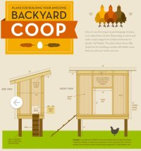 Tangled-Nest-Coop-Infographic-partial