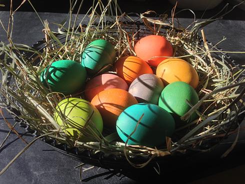 Eggs490