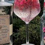 Blücher Gin und Abbodio Premium Tonic sind gut gekühlt quasi die Krone des Gin Tonic