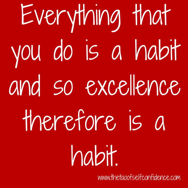 Everything that you do is a habit and so excellence therefore is a habit.