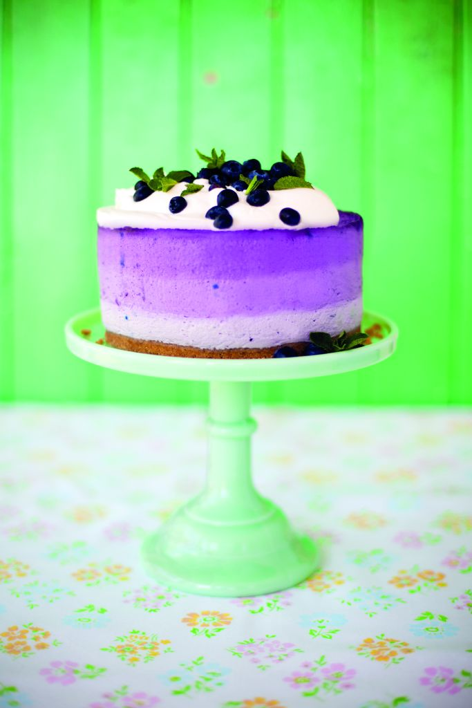 Sharon Blueberry Cheesecake_1
