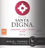 Santa Digna Rose