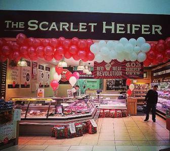 Scalet Heifer5