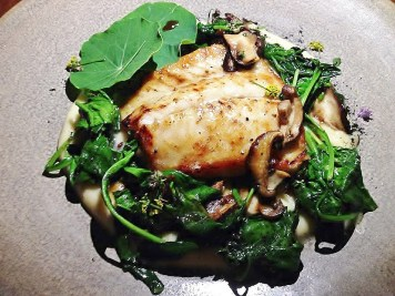 Sage Turbot and Samphire