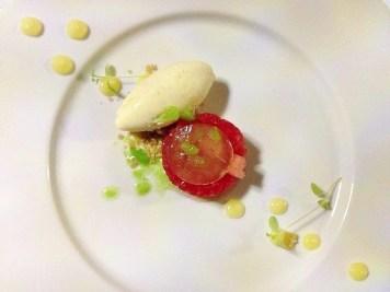 Delphi Resort Watermelon, Lime Vanilla Ice-Cream