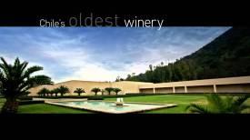 Carmen winery