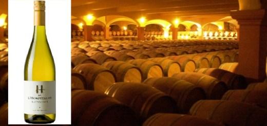 Wine of the Week - Gérard Bertrand H de L'Hospitalet Sauvignon Blanc Now €10 by Suzi Redmond