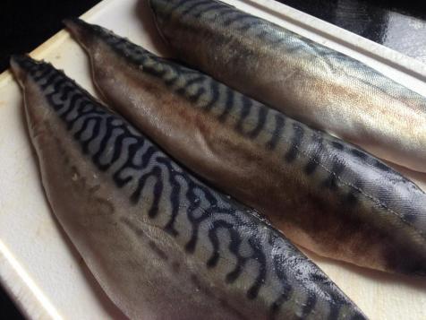 Mackerel Fillets
