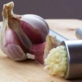 Mikulov Garlic Drummond House Garlic