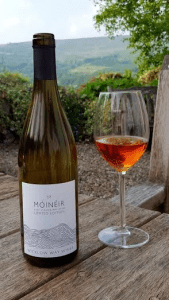 Fine Strawberry Wine from Móinéir - The Wicklow Way Wines Story