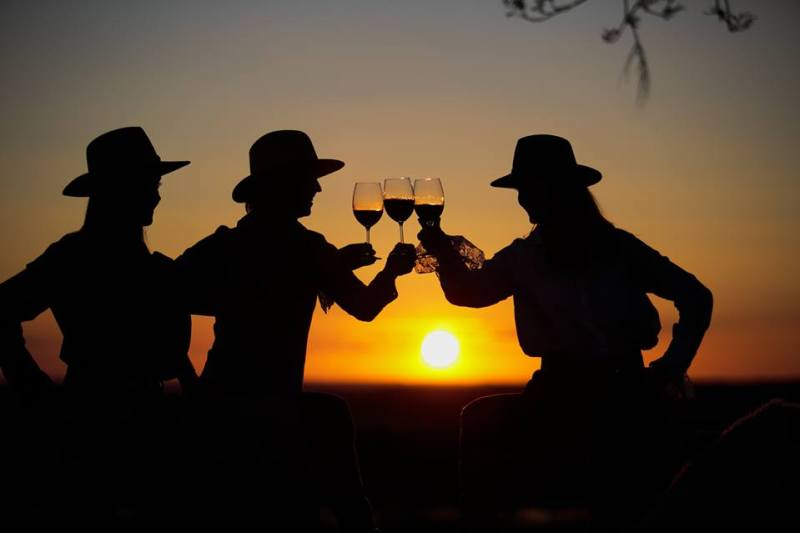 Elegance and Refinement: Discover the Fourth Wave of South American Wines