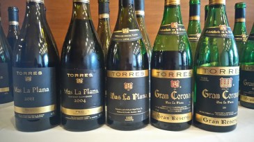 Familiar Grapes New Terroirs When Leaving the Comfort Zone Pays Up for Wines