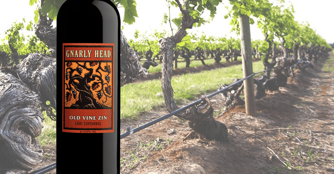 Gnarly Head Zinfandel - Wine of the Week from O'Briens Wine