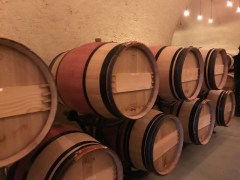 Ovid Winery Cellar