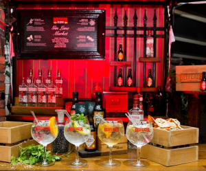 Ten of the Best Gin and Tonics in Ireland