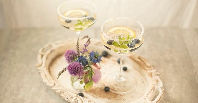 Siúcra & Catherine Fulvio Gin Fizz Cocktail Recipe