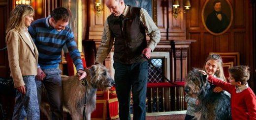 Ashford Castle Pet Friendly