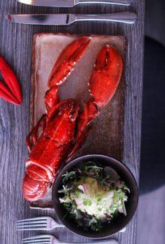 lobster lobstar