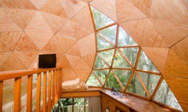 mushroom cabin
