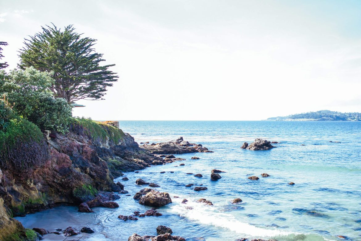 The Taste Edit visits Carmel Beach, it has white sands and is dog friendly