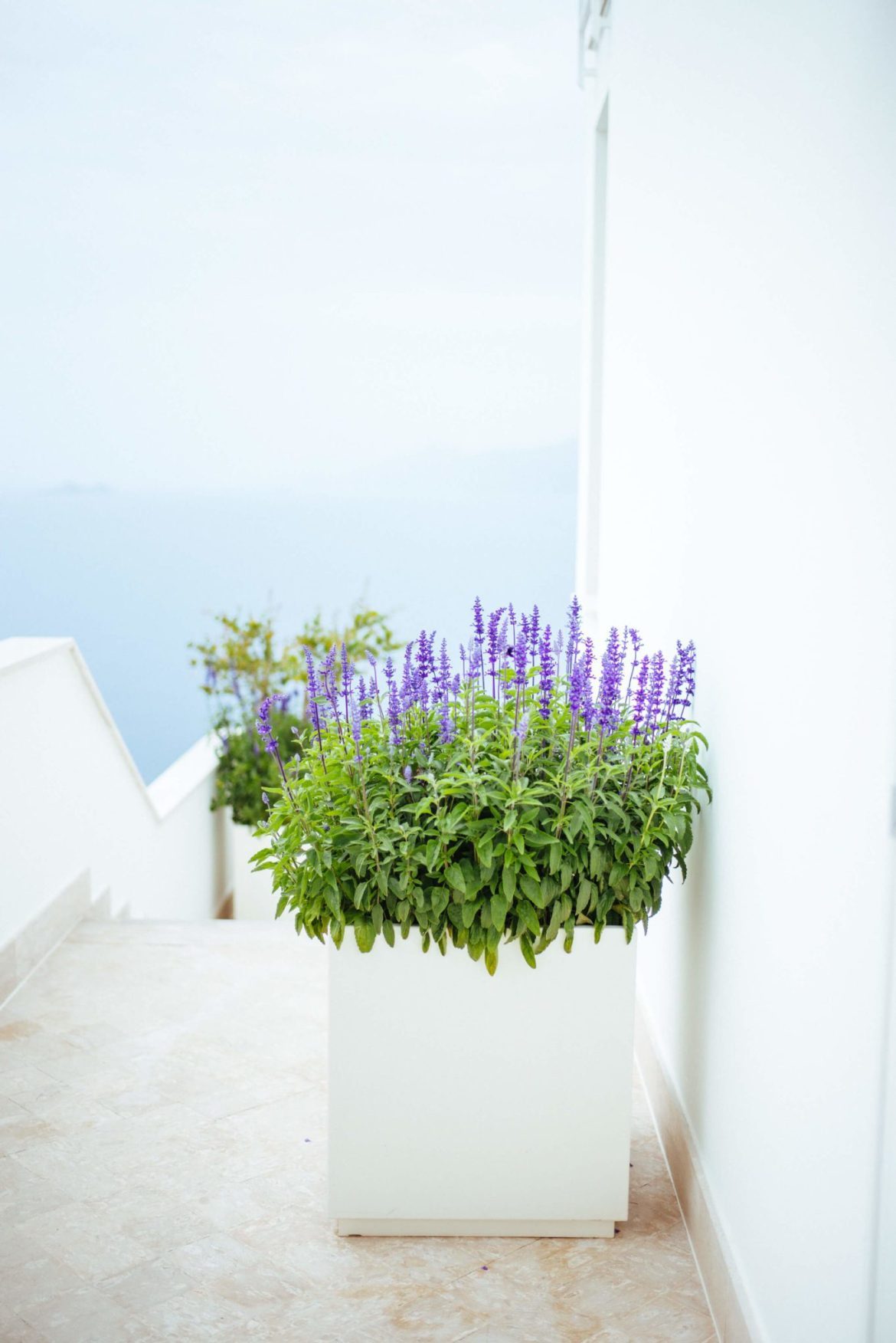 Relaxing hotel on the amalfi coast Casa Angelina Lifestyle Hotel in Praiano Italy, The Taste Edit