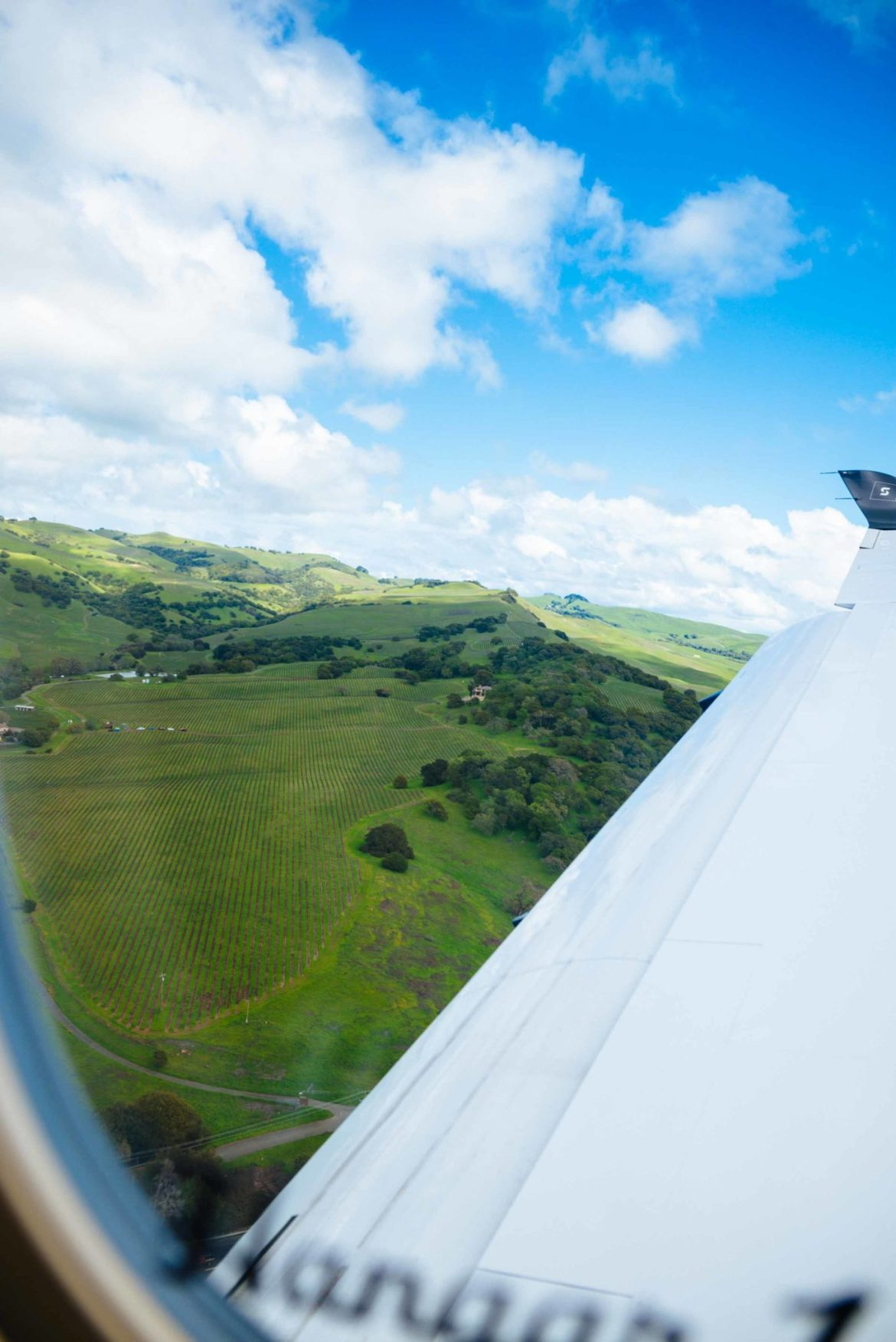 The Taste Edit takes in the view of Napa Valley vineyards from the Surf Air plane ride