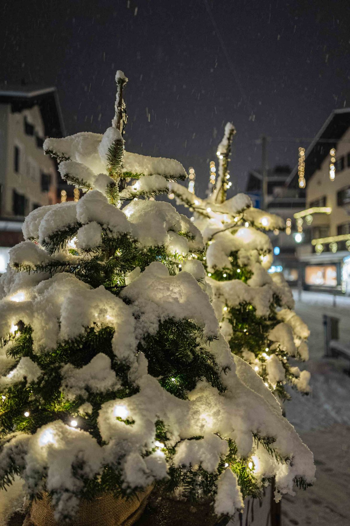The view of Klosters at night with fresh snow on the pine trees | The Taste Edit #travel #switzerland #swiss #snow