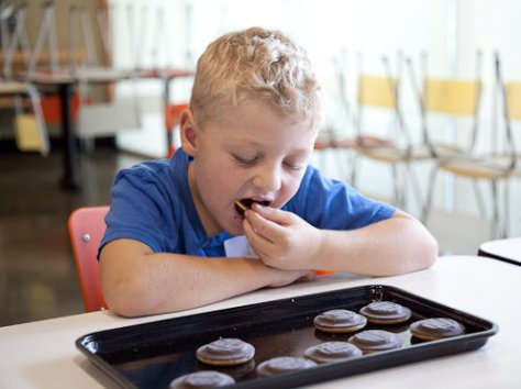 World Record For Eating Jaffa Cakes Rules