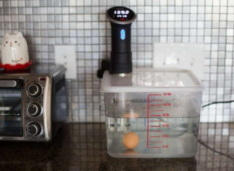 Best Sous Vide bath container - Rubbermaid