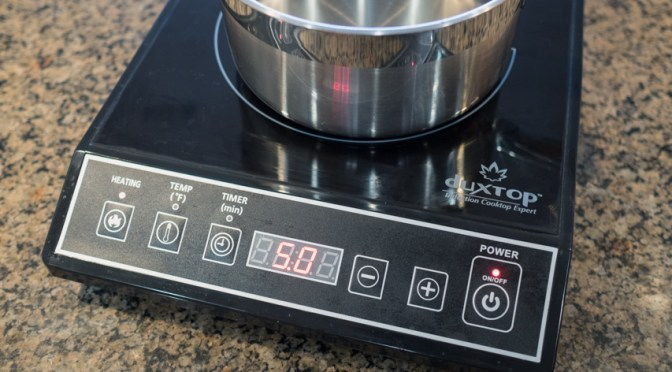 Buying an induction burner: 12 things you need to know