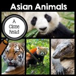 asian-animals-close-read