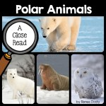 polar-animals-close-read