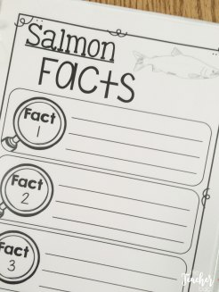 salmon graphic organizers