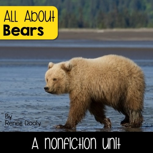 Bears Nonfiction Unit