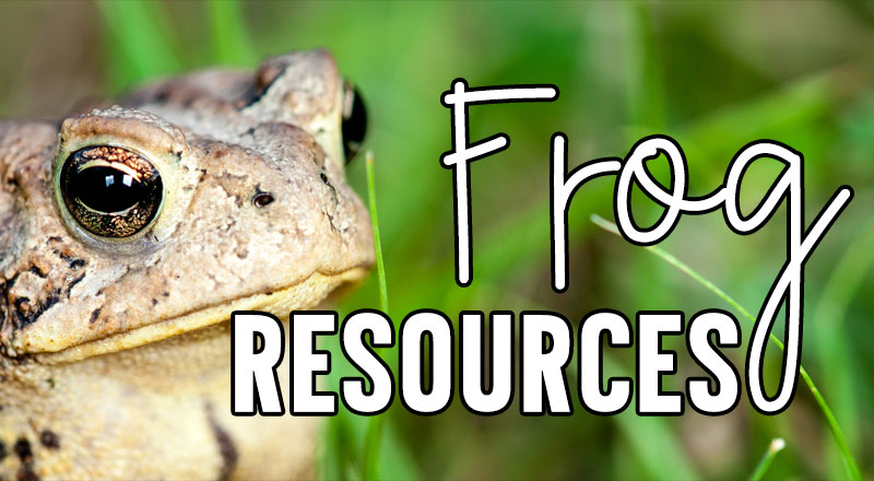 frog-resources