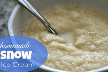Homemade Snow Ice Cream