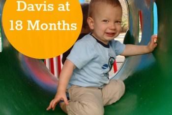 Davis at 18 Months