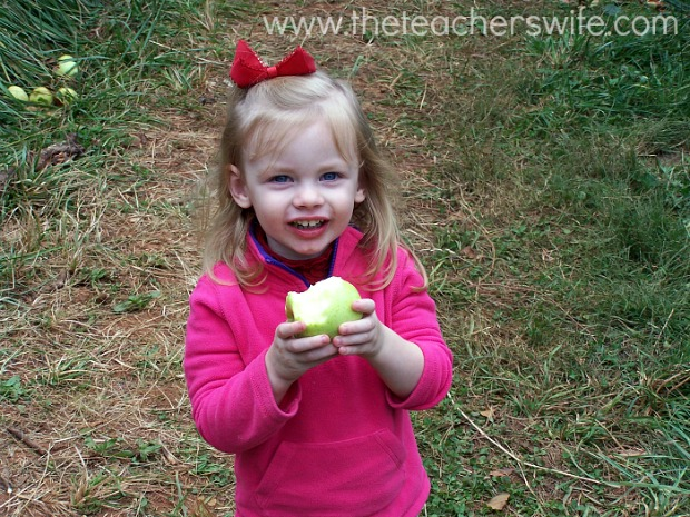 10 Frugal Ways To Enjoy Fall with Your Kids