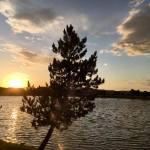 Sunset Walk with Thomas Vintage Lake 6.6.18 #10